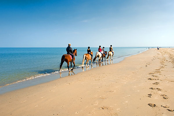 Horseback riding at the beach from the stables close to the Club Esse Torre delle Stelle